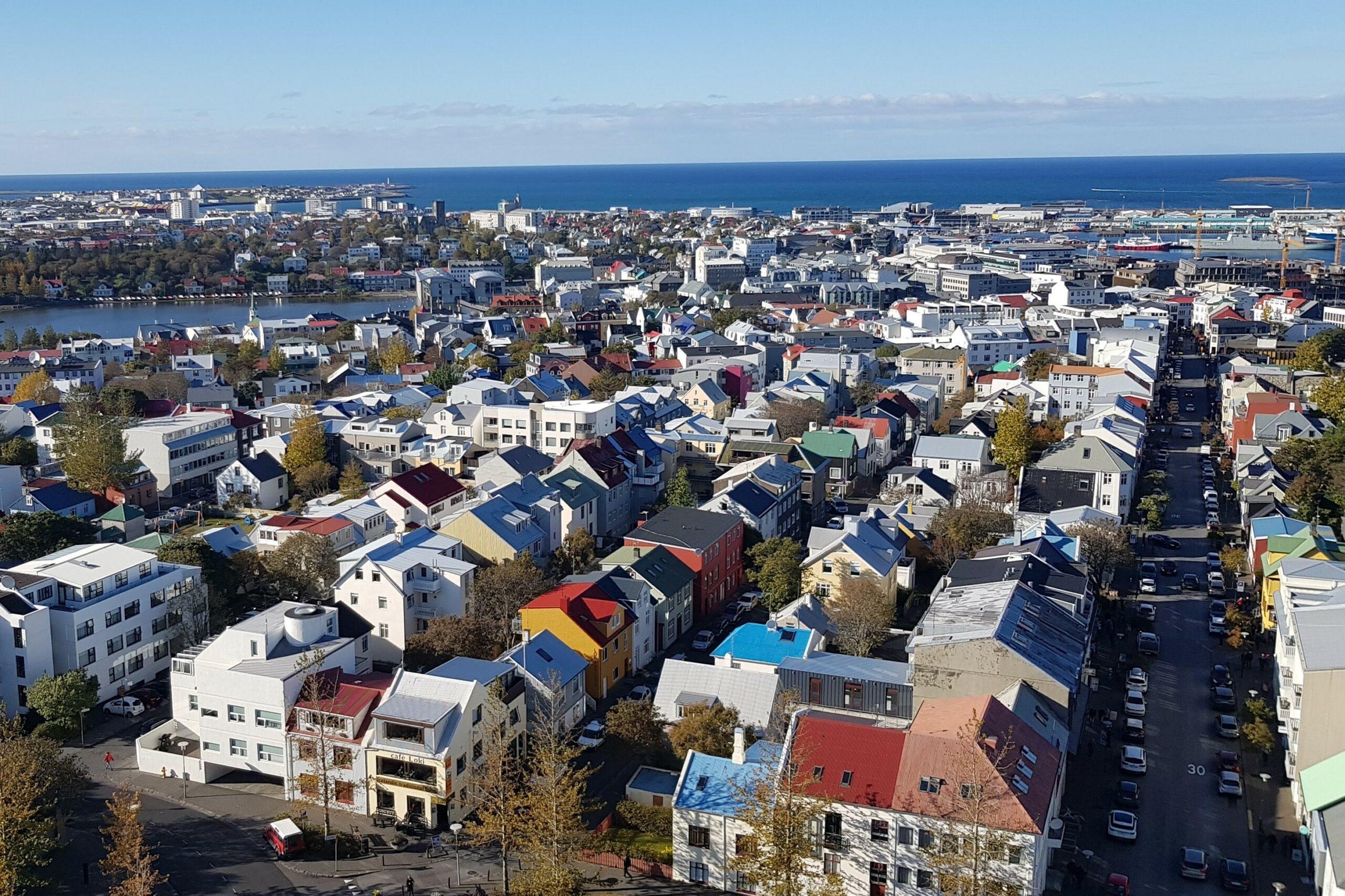 Reykjavíkurráð Viðreisnar